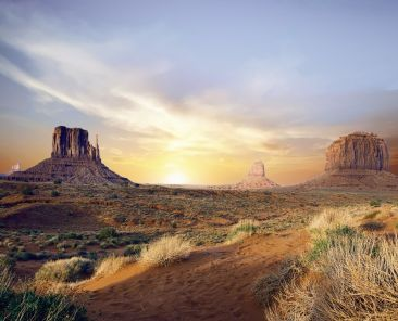 Arizona-Physician-Licensing-Medical-License-Pro